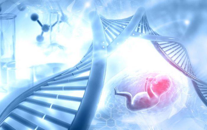 Preimplantasyon Genetik Tarama (PGS)